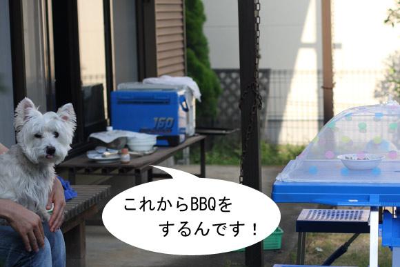 b0130271_11104177.jpg