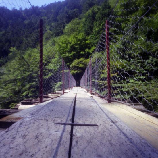 森林鉄道_c0054876_17511641.jpg