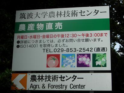 f0084795_0405045.jpg
