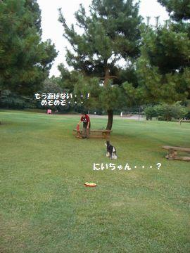 f0197317_2020334.jpg