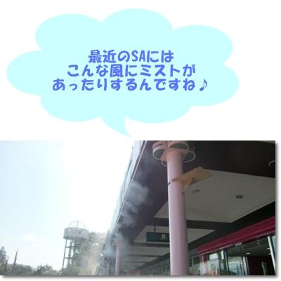 f0182121_114504.jpg