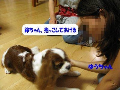 b0185323_225041.jpg