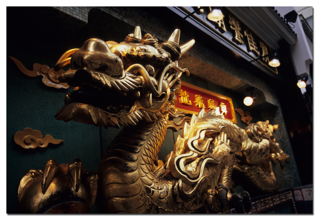 Golden Dragon_c0116732_049536.jpg