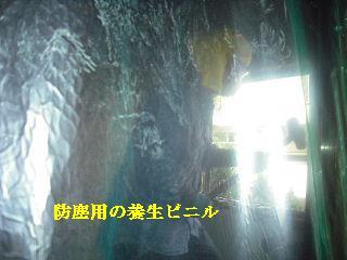 f0031037_20203679.jpg