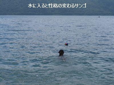 b0148945_074084.jpg
