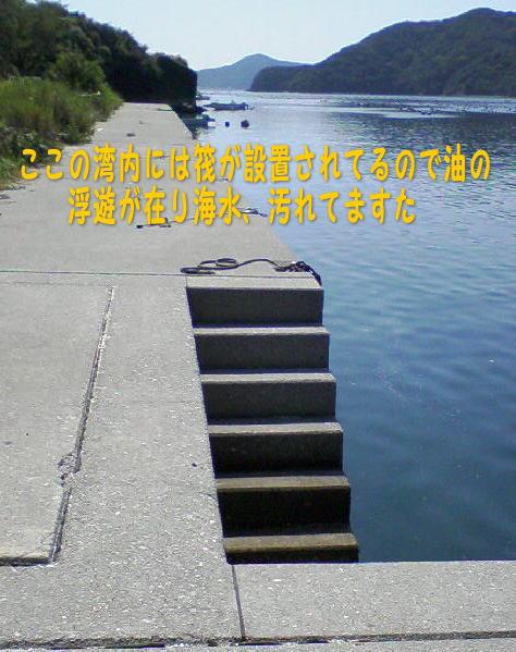 c0169168_12145884.jpg