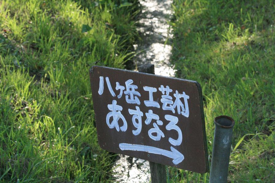ノシメトンボと遊ぶ         八ヶ岳高原・若林_a0107574_20511021.jpg