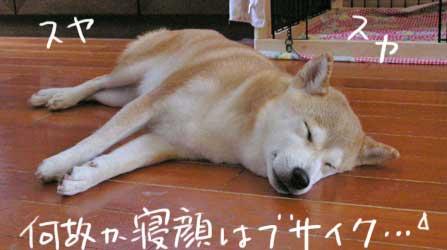 b0057675_2146944.jpg
