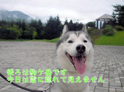 f0112407_1091721.jpg