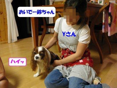 b0185323_1631976.jpg