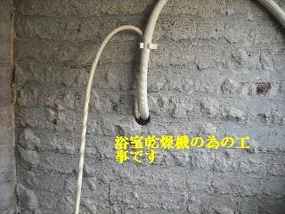 f0031037_2005490.jpg
