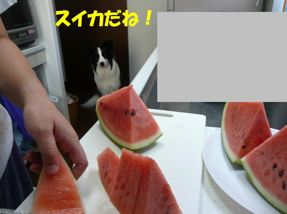 c0147241_22333467.jpg