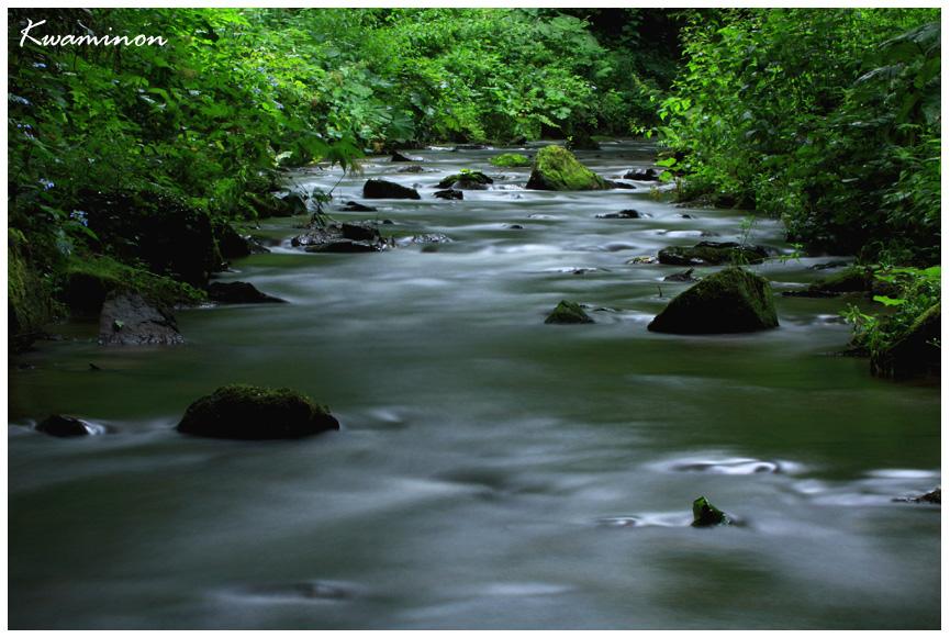 川の流れ。_a0103257_547331.jpg