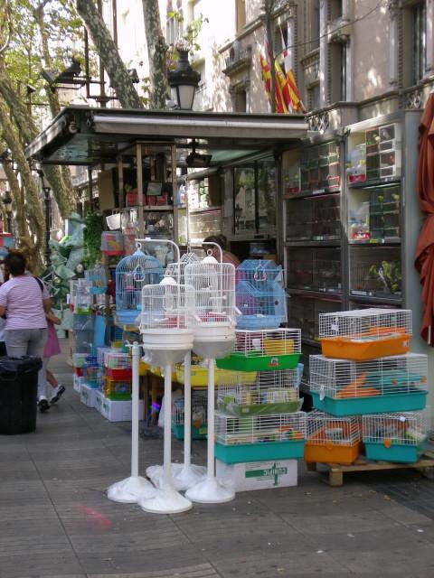 バルセロナ----ランブラス通り編_c0179785_230177.jpg