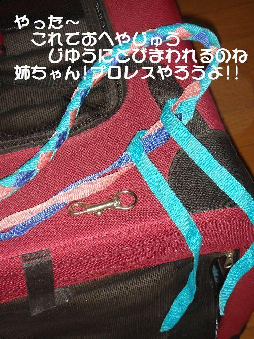 b0101991_22371777.jpg