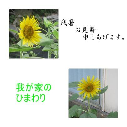 a0137997_11164426.jpg