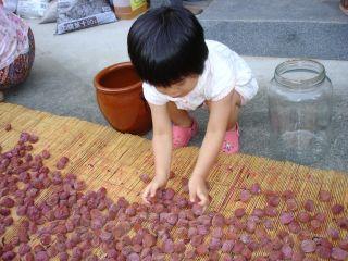 梅干しと、cocoaさんの手作りパンとマコちゃん_e0166301_20571860.jpg