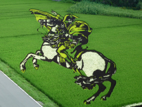 田んぼ見に行きましたよ。_e0148212_16341069.jpg