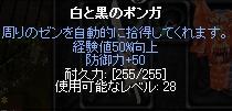 b0184437_3351024.jpg