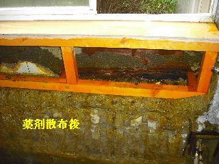 浴室リフォーム・解体工事・土間コン作業_f0031037_1914932.jpg