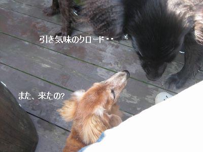b0148945_244122.jpg