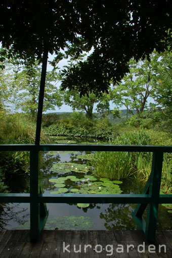 モネの庭_e0119151_10531458.jpg