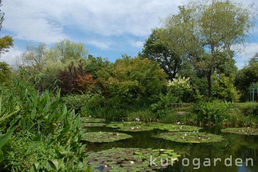 モネの庭_e0119151_10532332.jpg