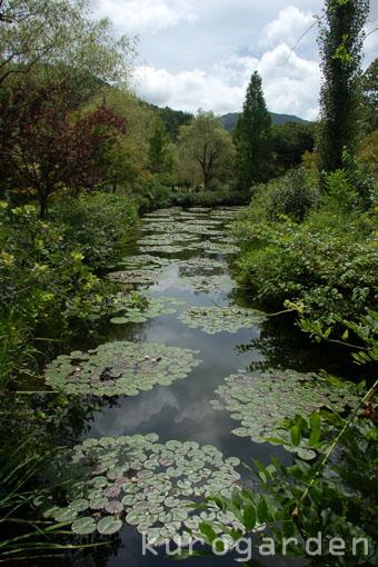 モネの庭_e0119151_1053599.jpg