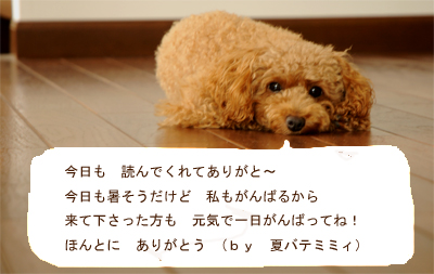 c0196673_1261085.jpg