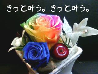 8/21   紙(かく)_c0111102_5495659.jpg