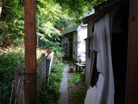 田んぼの後は犬をみにいきました。_e0148212_16311891.jpg