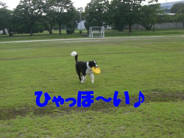 b0137913_0503849.jpg