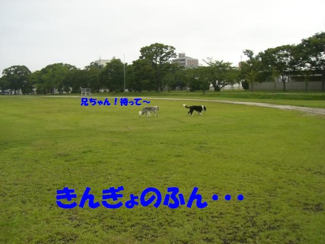 b0137913_0543427.jpg