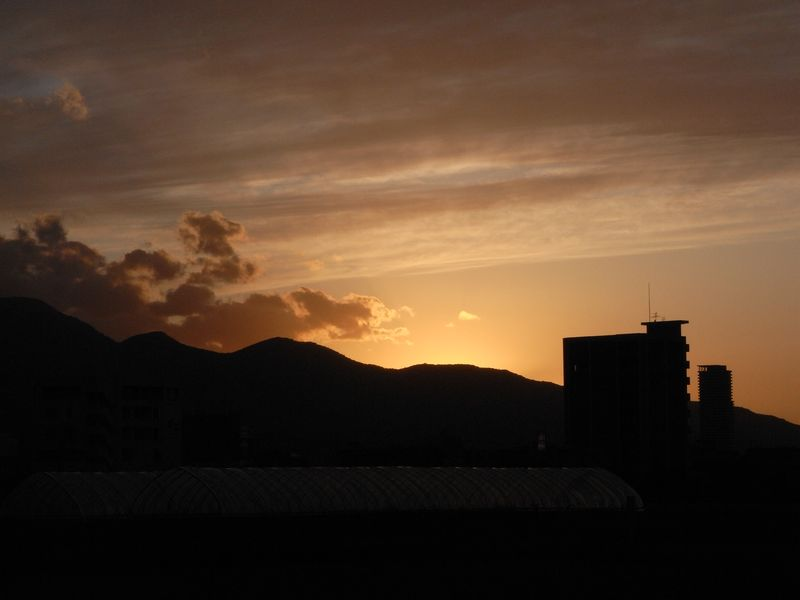 夕日のポプラ並木_c0025115_19461541.jpg
