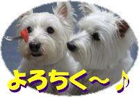 f0084422_13373712.jpg