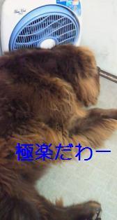 f0077931_2283850.jpg