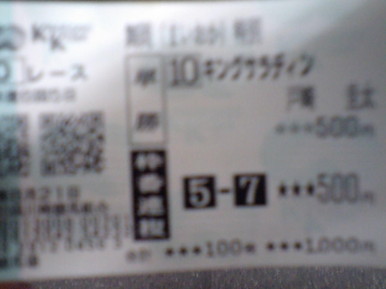 川崎競馬最終レース_d0057733_2195528.jpg