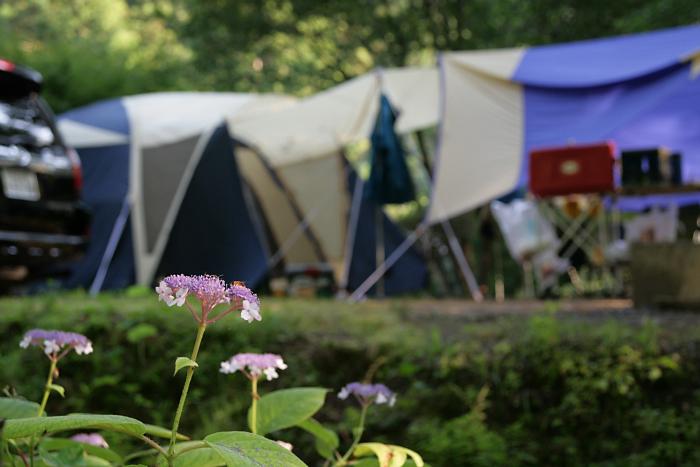 """我が家のキャンプ日記 """"キャンプ場""""_c0120834_90445.jpg"""