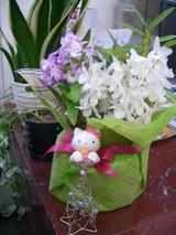 お花の贈り物