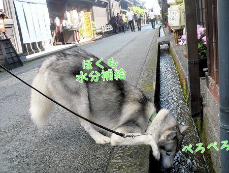 f0112407_933636.jpg