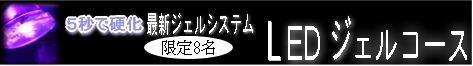 b0059410_20334416.jpg