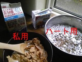 朝食_f0148927_6572384.jpg