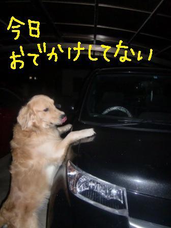 f0176830_1535764.jpg