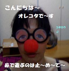 a0113070_14263710.jpg