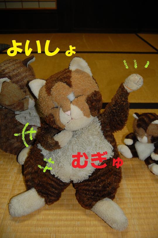 b0059978_21152684.jpg