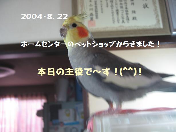 e0027078_848472.jpg