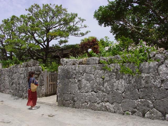 初めて行った沖縄で味わったモノたち(の一部)_f0189086_20341390.jpg