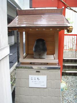 野中神社_b0074601_21472368.jpg