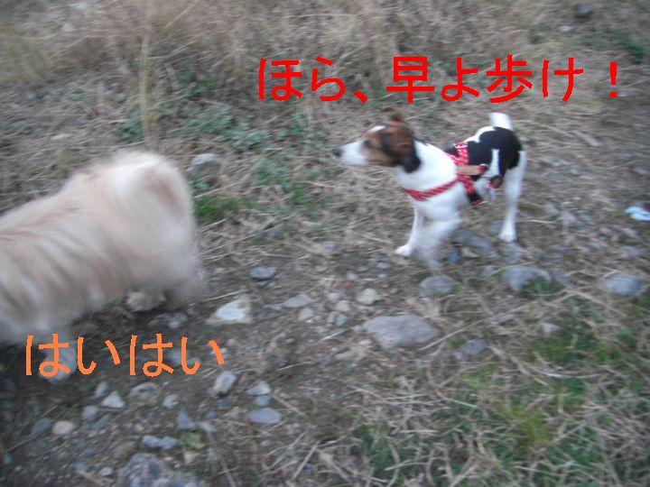 f0053952_12581282.jpg