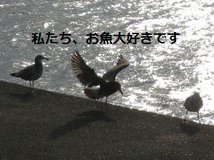 e0020555_15342352.jpg